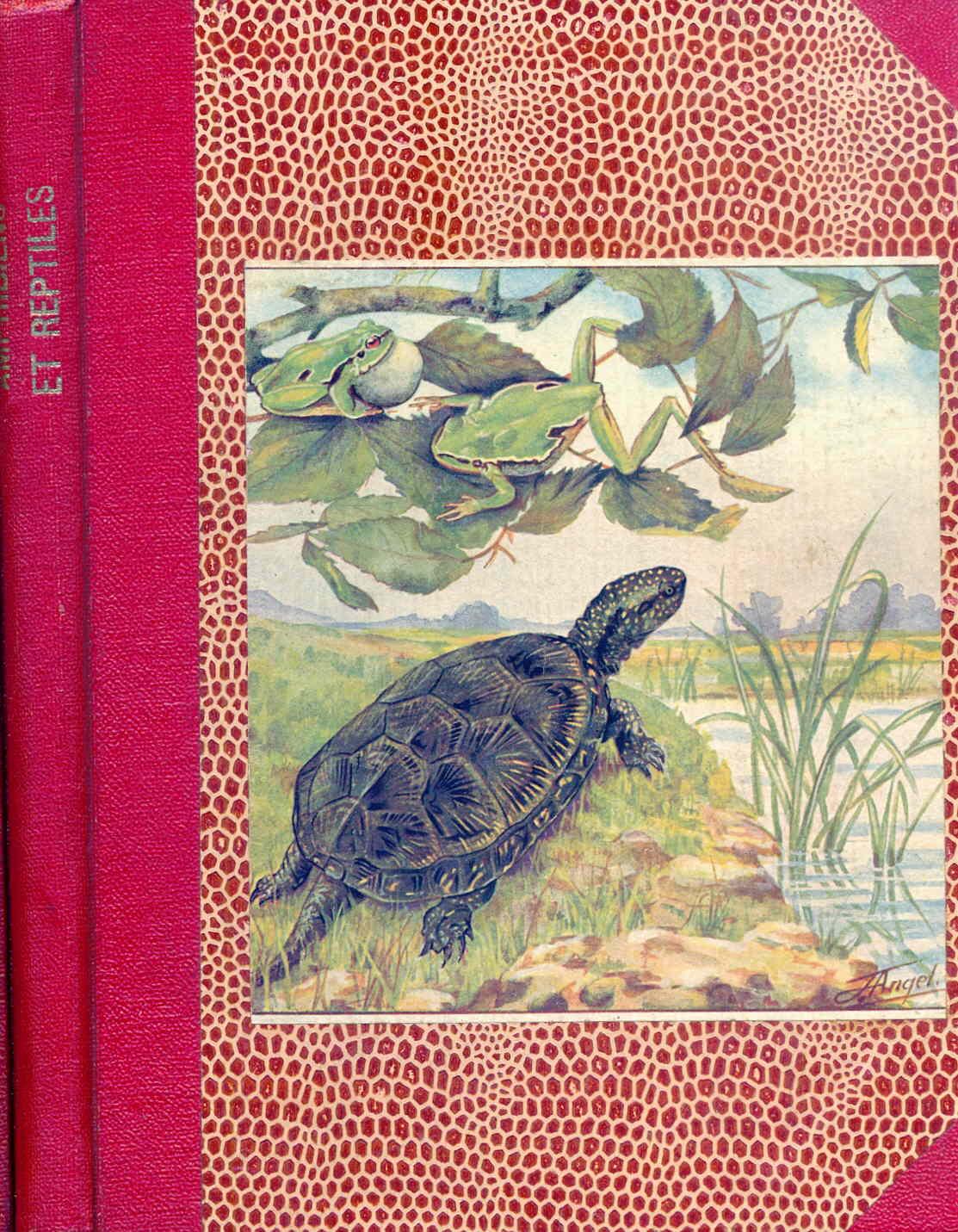 Petit atlas des amphibiens et reptiles