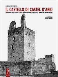 Il castello di Castel d'Ario