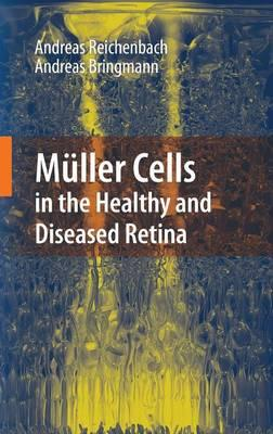 Muller Cells in the Healthy and Diseased Retina