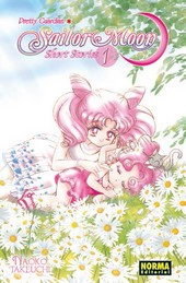 Pretty Guardian Sailor Moon, Short Stories #1 (de 2)