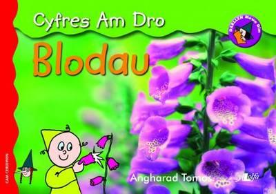 Blodau (Cyfres am Dr...