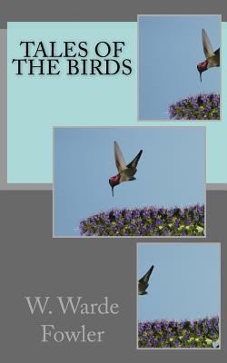 Tales of the Birds