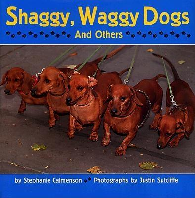 Shaggy, Waggy Dogs