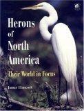Herons of North America