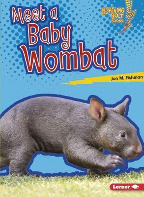 Meet a Baby Wombat
