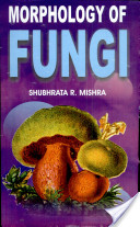 Morphology of Fungi