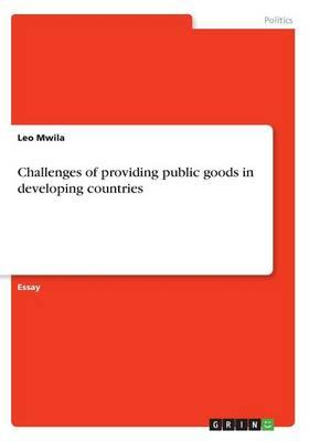 Challenges of providing public goods in developing countries