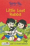 Little Lost Rabbit