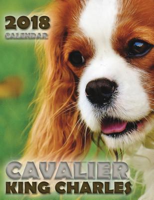 Cavalier King Charle...