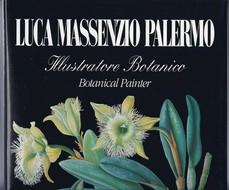 Luca Massenzio Palermo