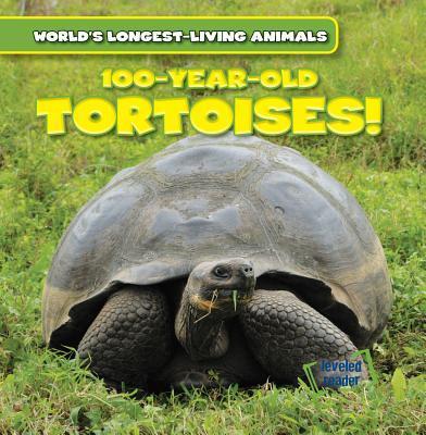 100-year-old Tortoises