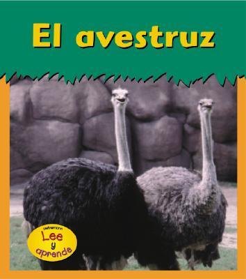 El Avestruz / Ostrich