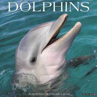 Dolphins 2018 Calendar
