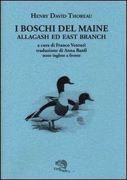 I boschi del Maine