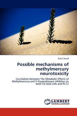 Possible mechanisms of methylmercury neurotoxicity