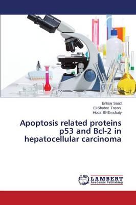 Apoptosis related proteins p53 and Bcl-2 in hepatocellular carcinoma