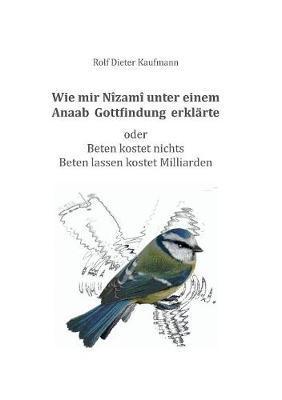 Wie mir Nîzamî unter einem Anaab Gottfindung erklärte