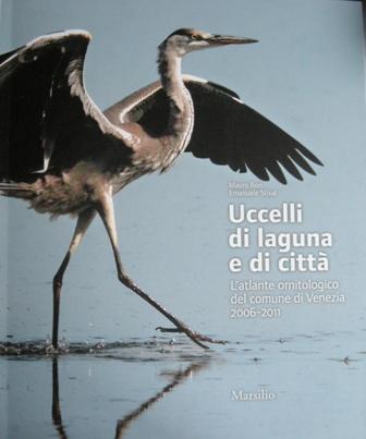 Uccelli di laguna e di città