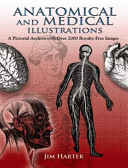 Anatomical and Medical Illustrations