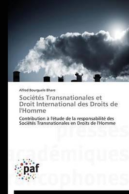 Societes Transnationales et Droit International des Droits de l'Homme