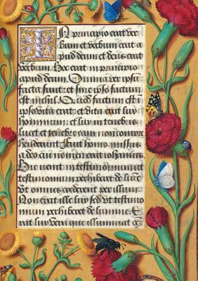 Carnet Blanc Heures Anne de Bretagne, Oeillets