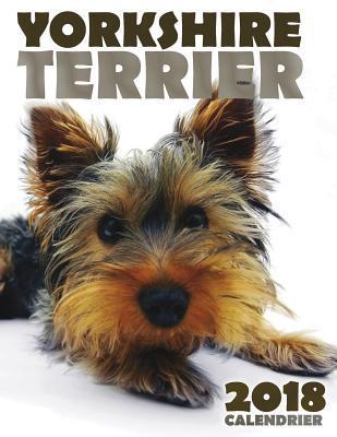 Yorkshire Terrier 20...