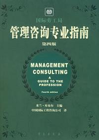 管理咨询专业指南 第四版
