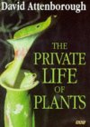 The Private Life of ...
