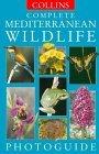 Complete Mediterranean Wildlife