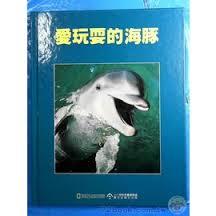 愛玩耍的海豚