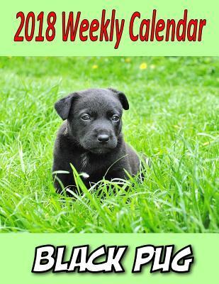 2018 Weekly Calendar Black Pug