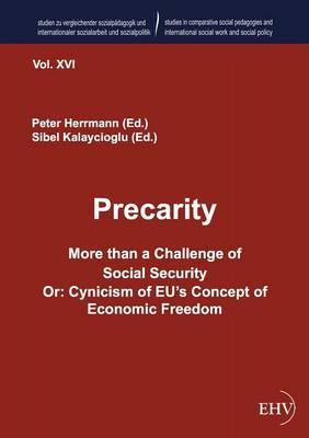 Precarity. More than a Challenge of Social Security
