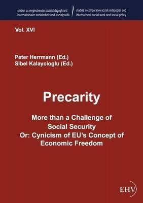 Precarity. More than...