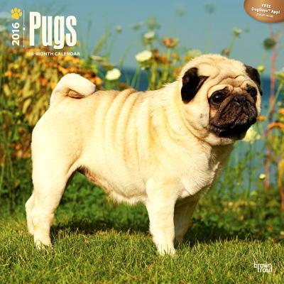 Pugs 2016 Calendar