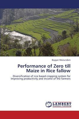Performance of Zero till Maize in Rice fallow