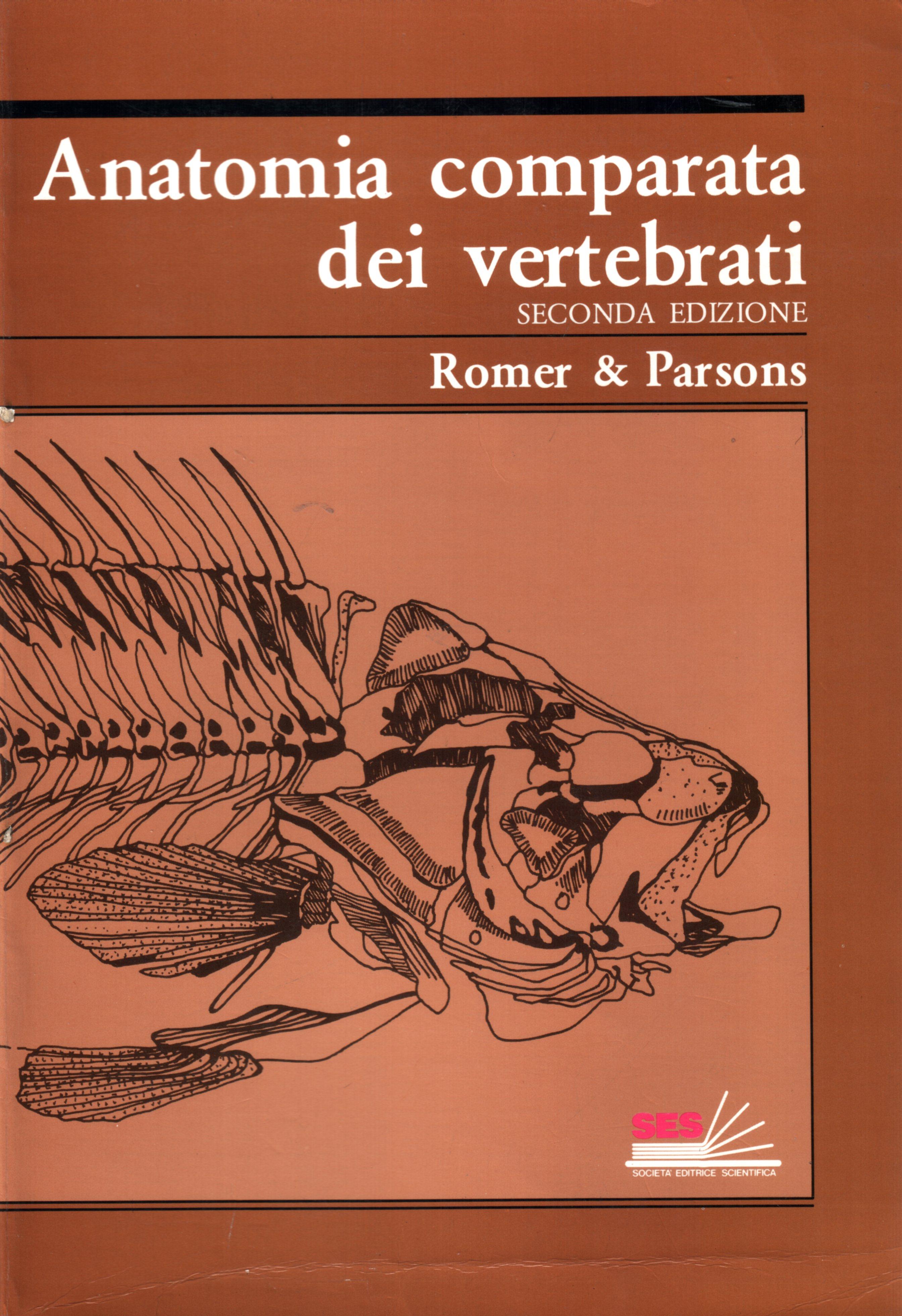 Anatomia comparata dei vertebrati