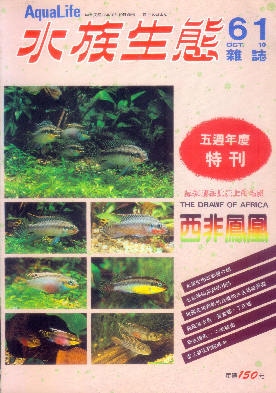 水族生態-61