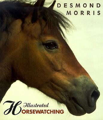 Illustrated Horsewatching