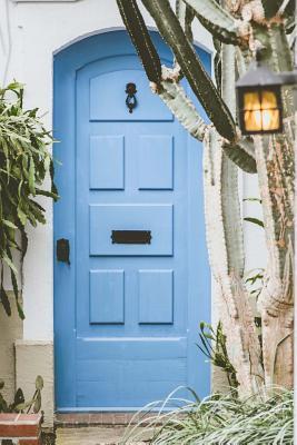 Cacti in Front of Blue Door Notebook