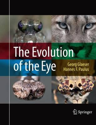 Die Evolution Des Au...