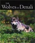 The Wolves of Denali