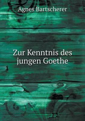 Zur Kenntnis Des Jungen Goethe