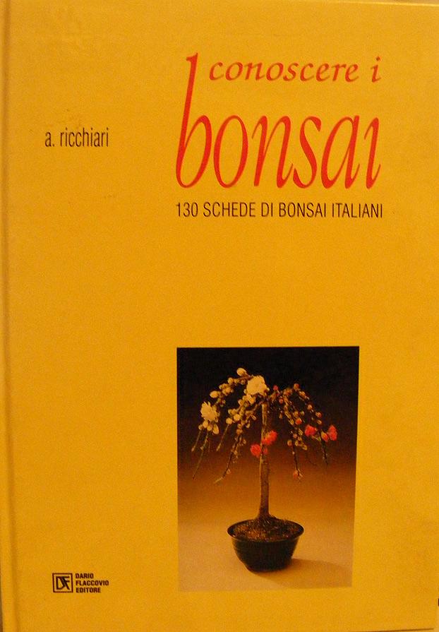 Conoscere i bonsai