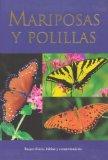 Mariposas y polillas