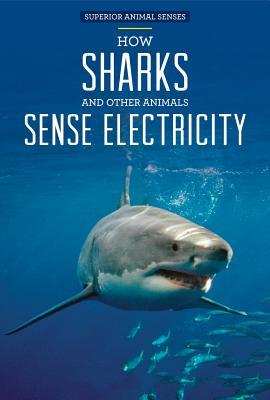 How Sharks and Other Animals Sense Electricity