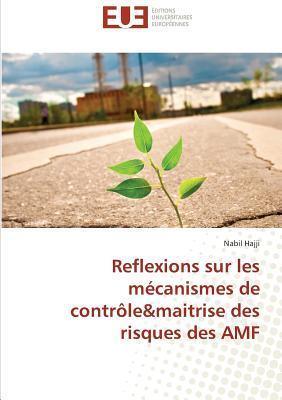 Reflexions Sur les Mécanismes de Controle&Maitrise des Risques des Amf
