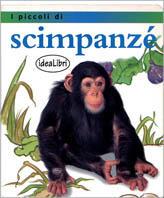 I piccoli di scimpan...