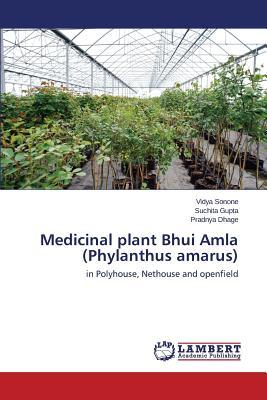 Medicinal plant Bhui Amla (Phylanthus amarus)
