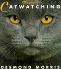 Illustrated Catwatch...