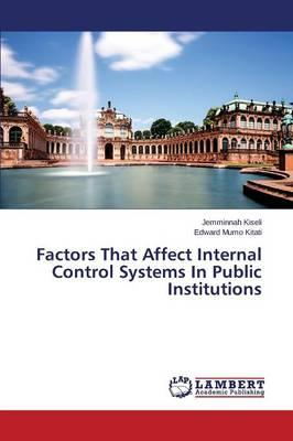 Factors That Affect Internal Control Systems In Public Institutions